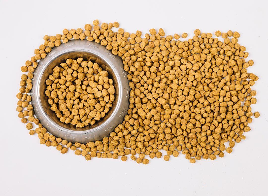 A polêmica do suplemento alimentar para animais